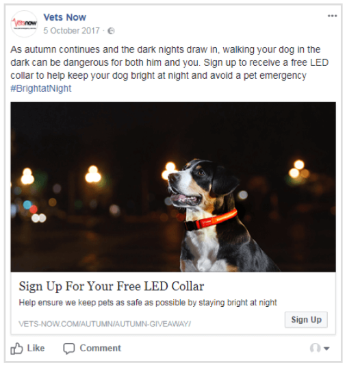 DimNiko - Facebook Lead Ad Example 3